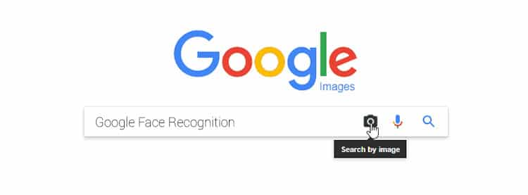 Google Face Recognition-face recognition web search engine