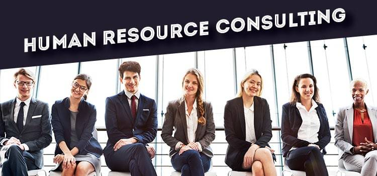 Human Resource Consulting - without investment business