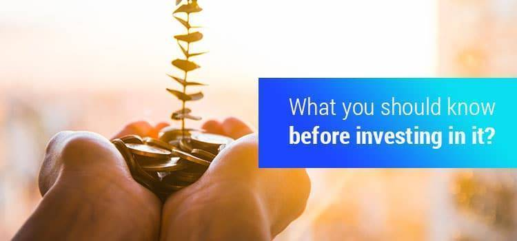 What you should know before investing in it