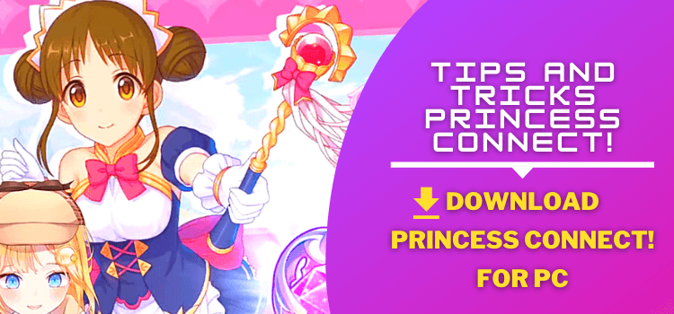 Princess Connect for pc