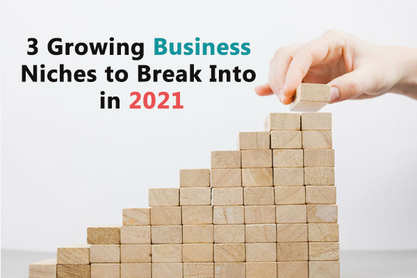3 Growing Business Niches to Break Into in 2021